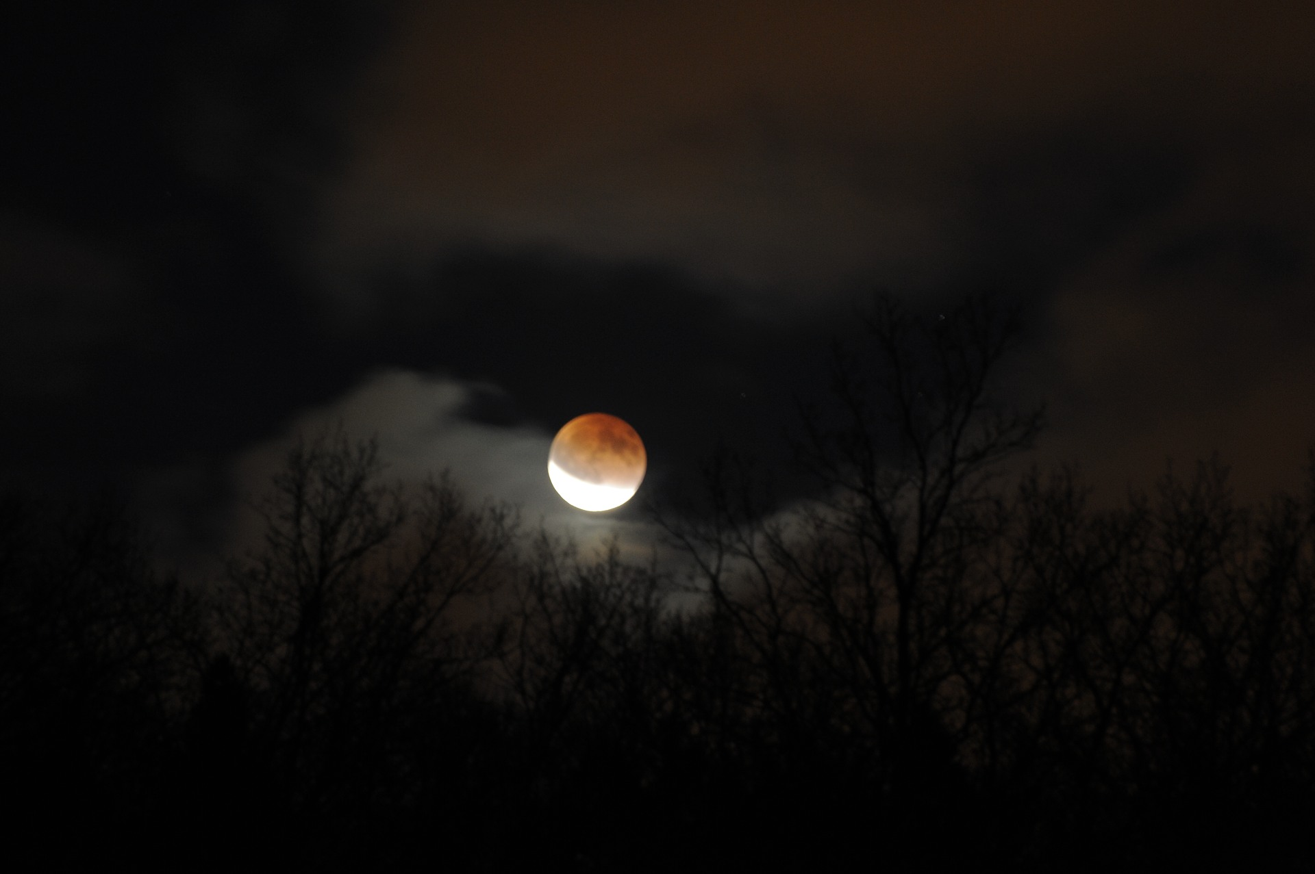 Lunar eclipse 2011-12-10 by Magnus Norden