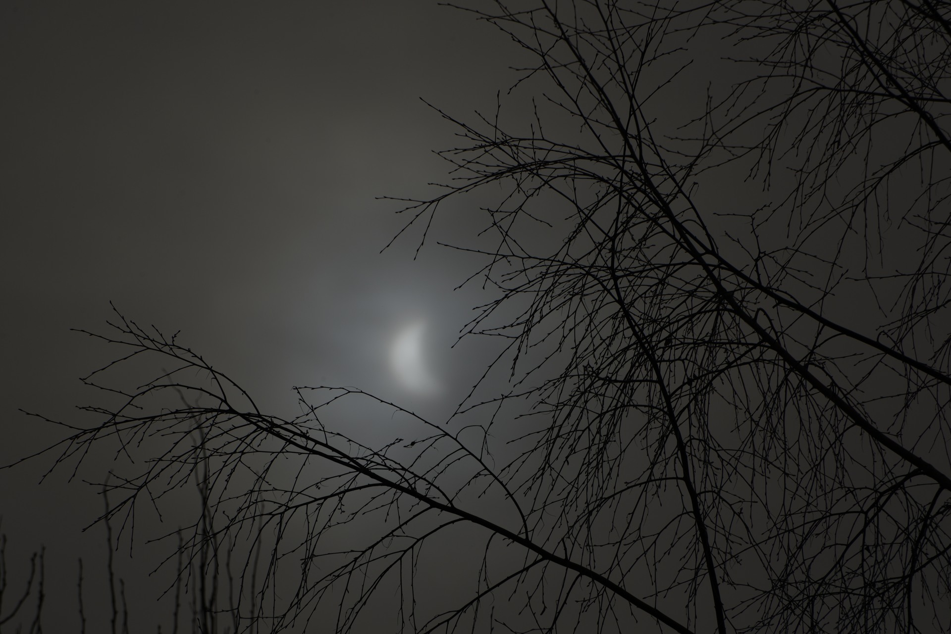 2015-03-20:013 Solar Eclipse by Magnus Norden