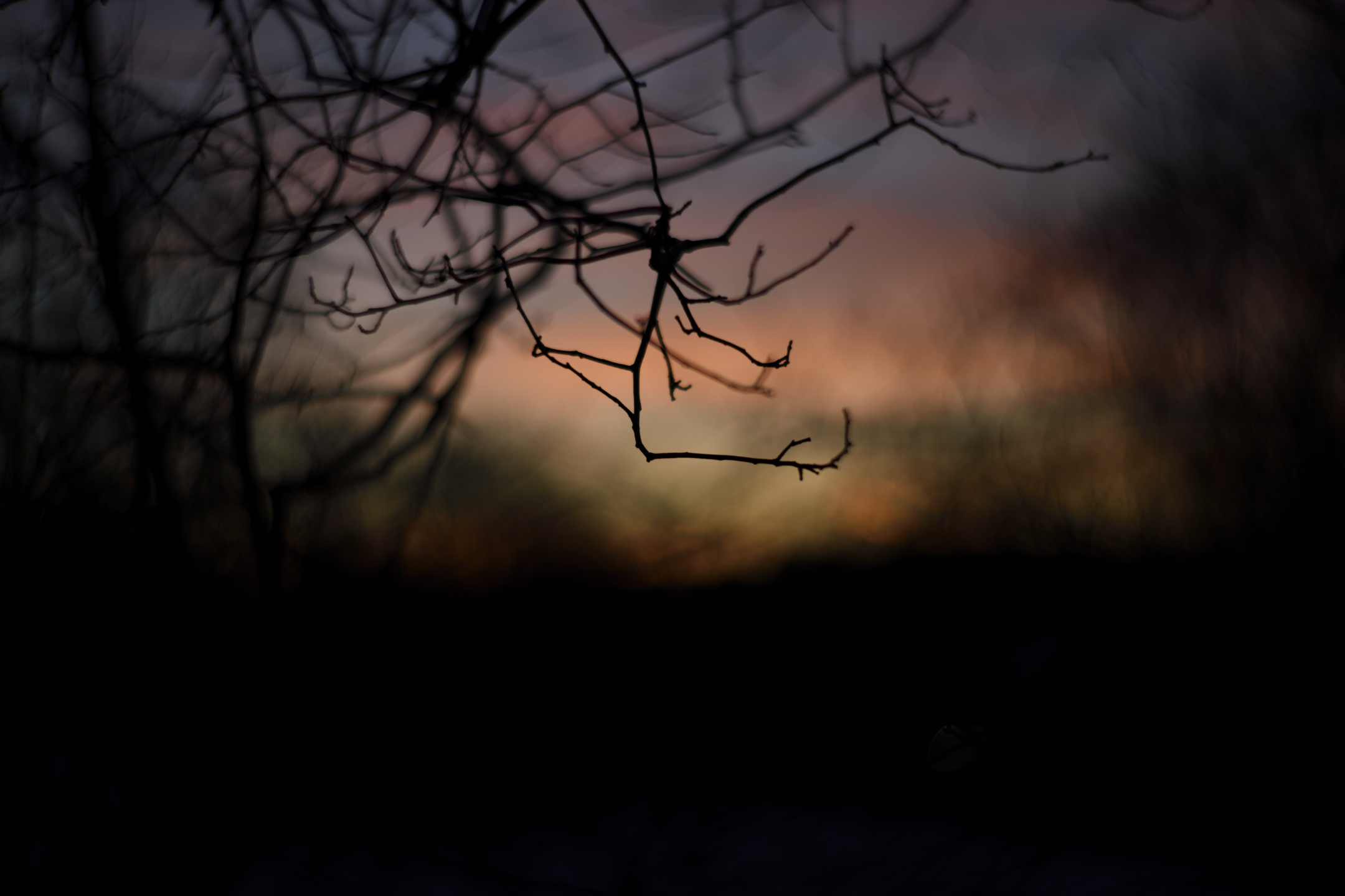 Photo by Magnus Norden