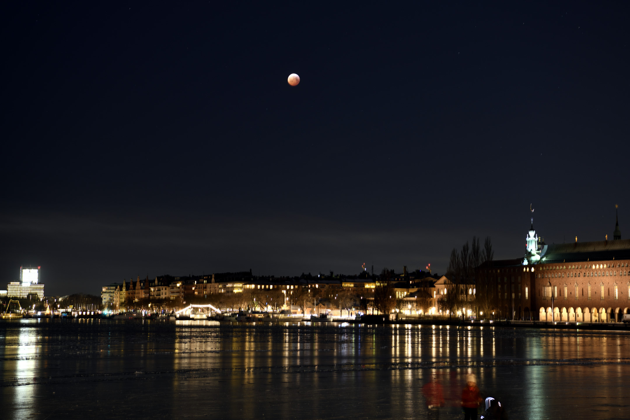 Lunar Eclipse January 2019 by Magnus Norden