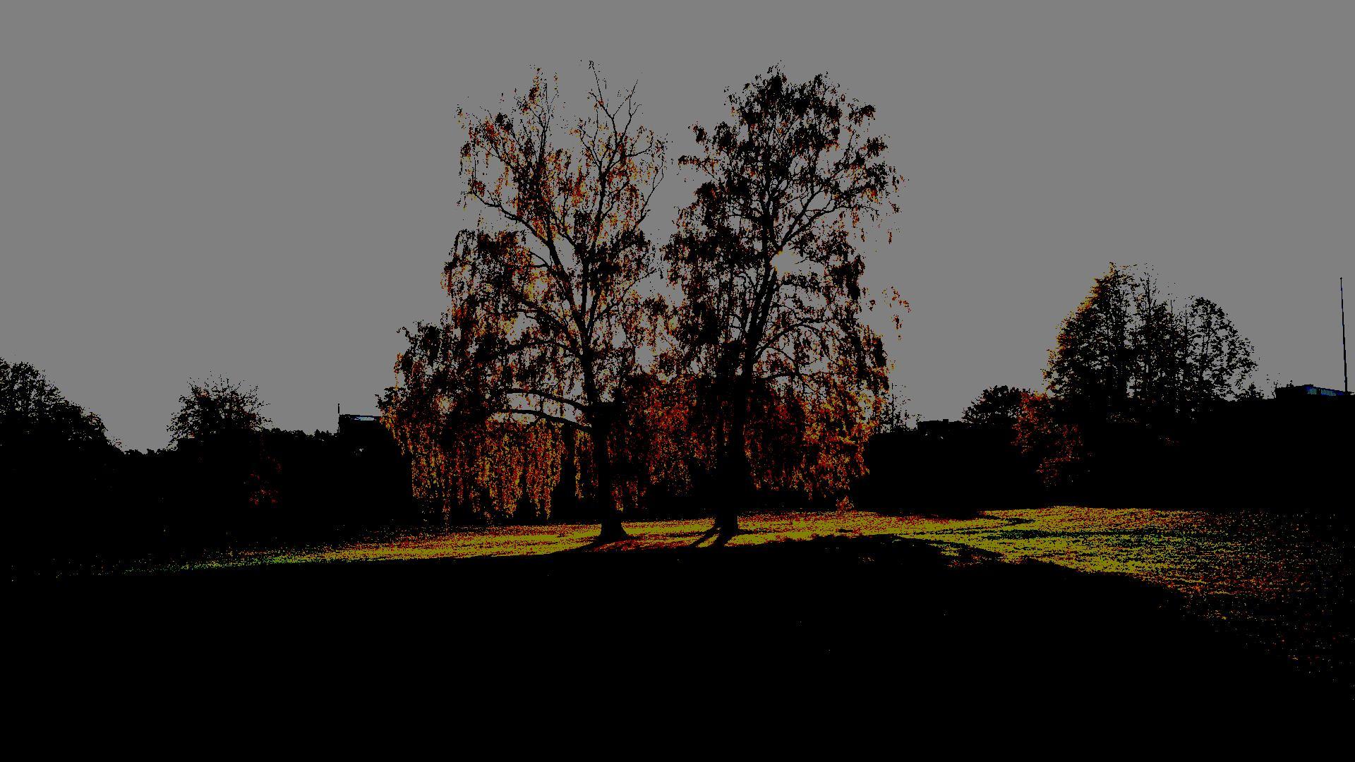 Frescati foto Magnus Norden