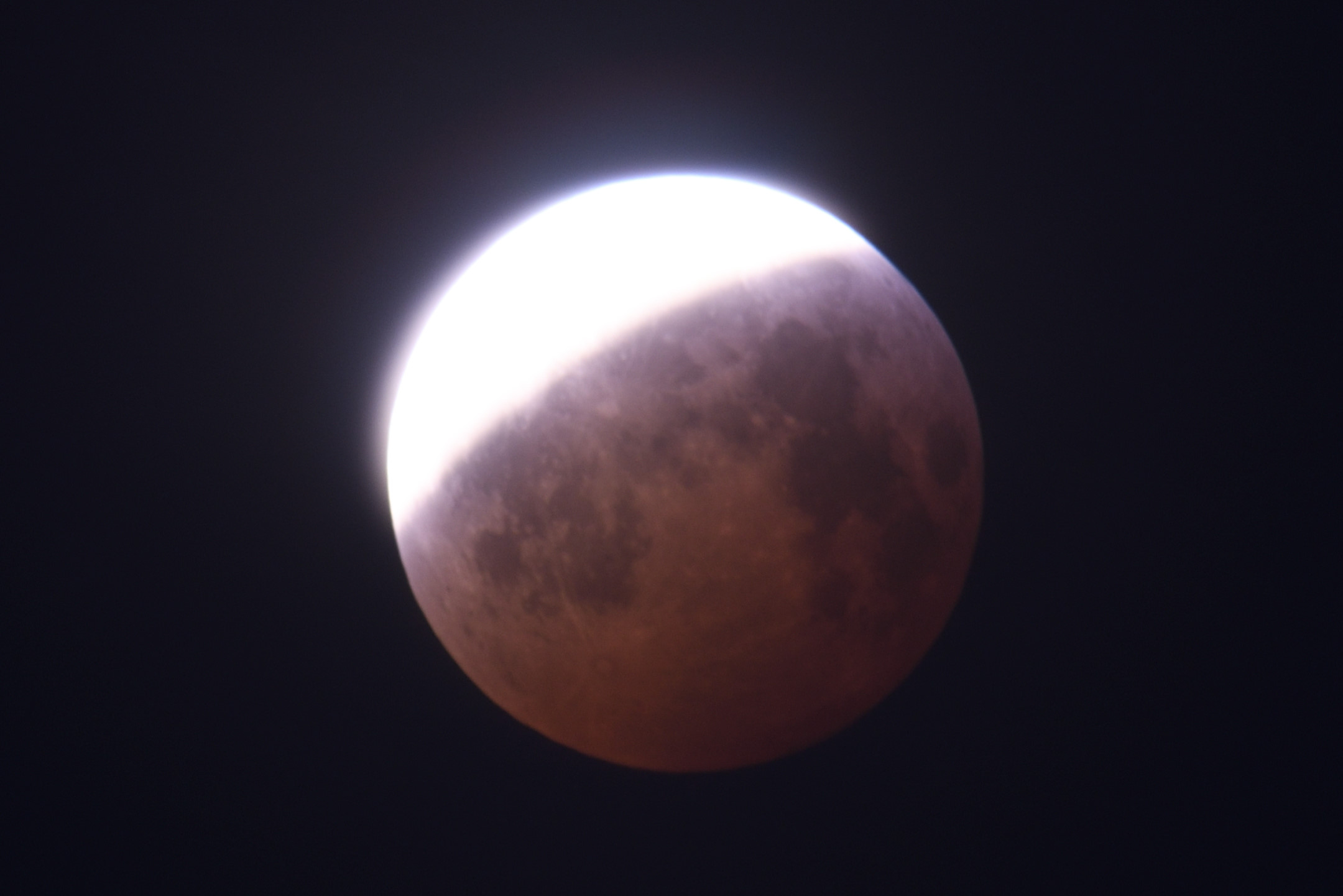 2019-01-21 Lunar eclipse by Magnus Norden